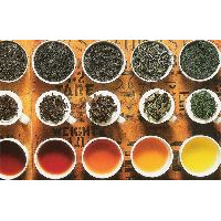 Tea, Infusions and Herbs