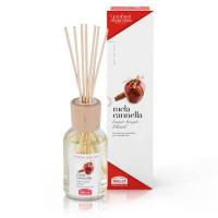MELA CANNELLA-Bastoncini aromatici 100ml