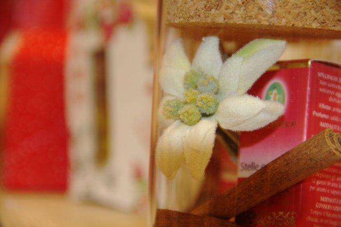 L'Oasi Botanica - Flora kit regalo olio essenziale